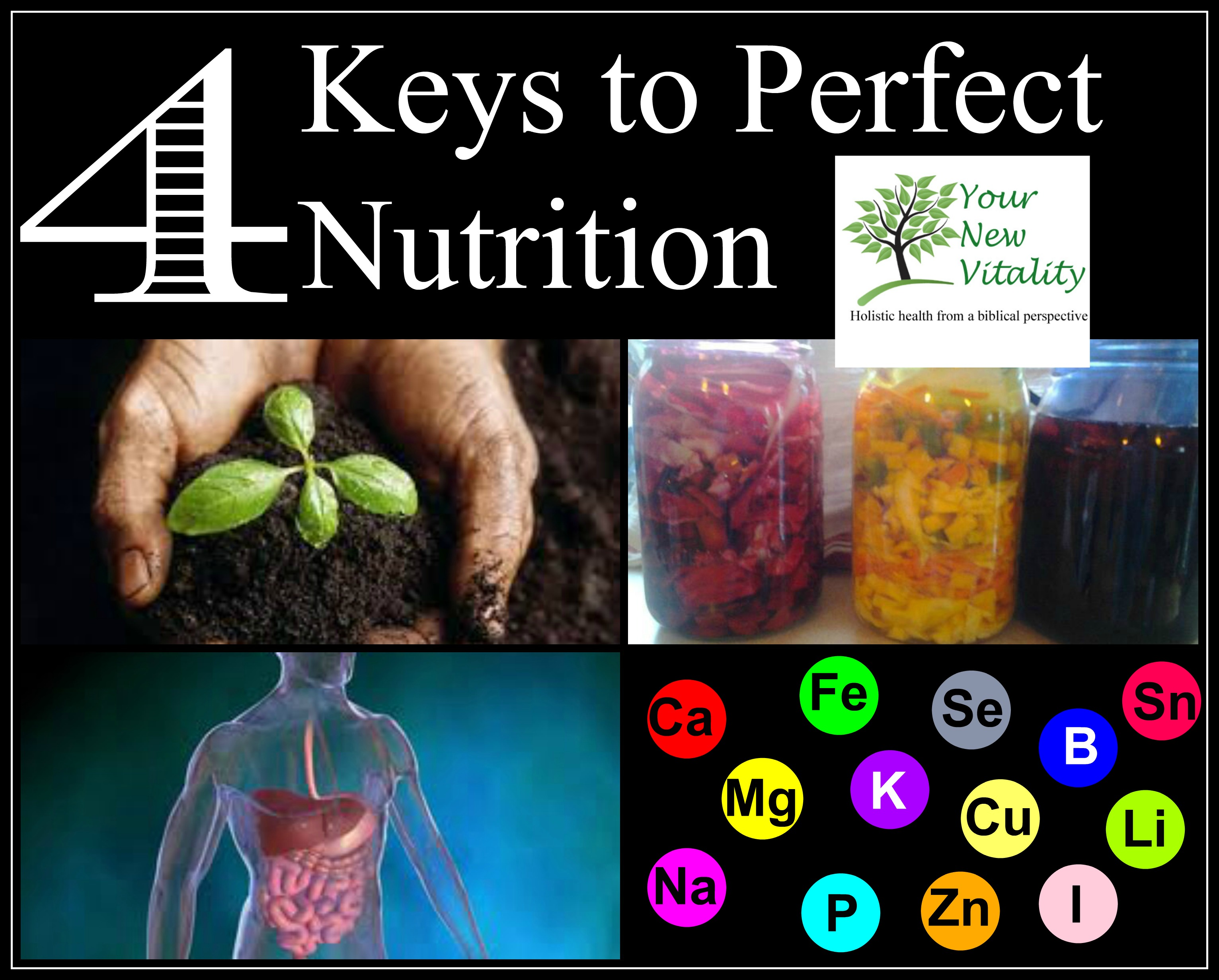 4 Keys to Perfect Nutrition1