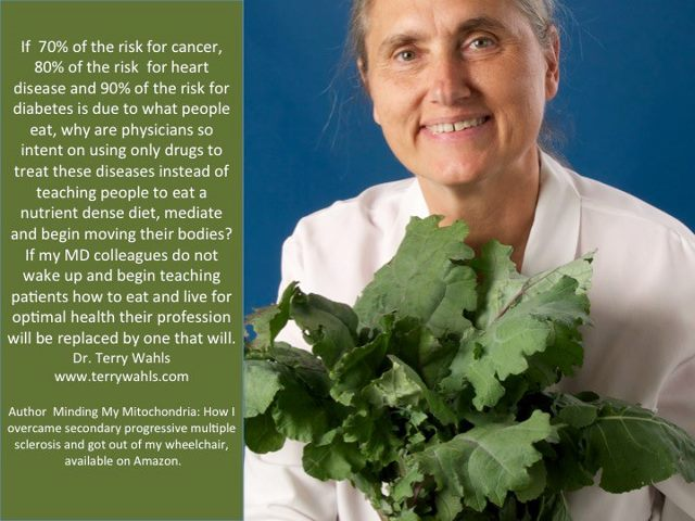 Dr. Terry Wahls on Diet