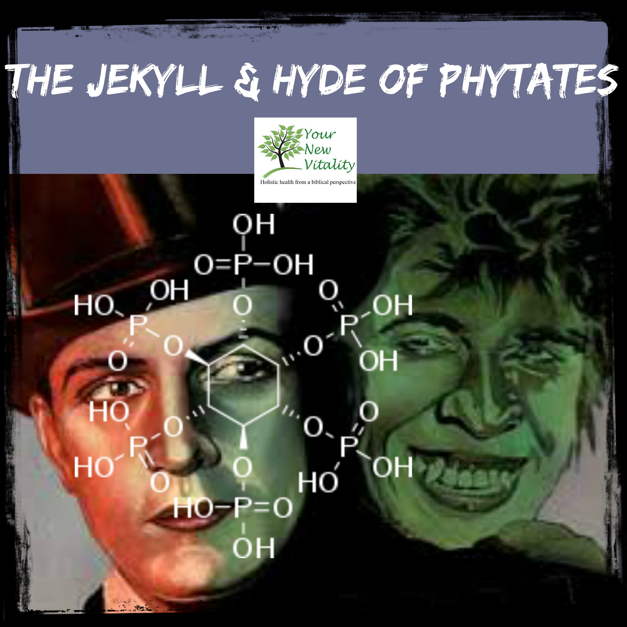 jekyll  hyde of phytates2