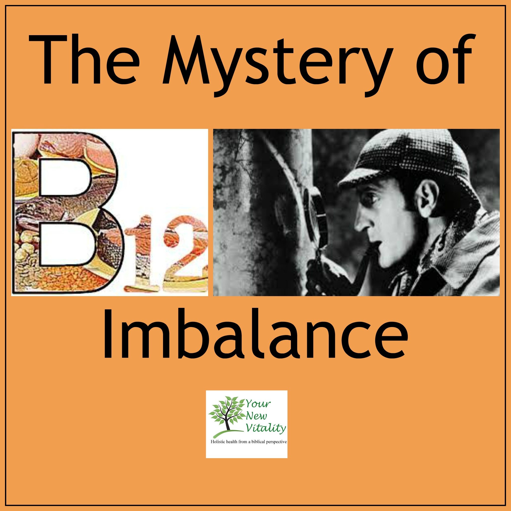 the mystery of B12 imbalance2