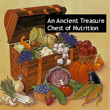 treasure chest of nutrition2